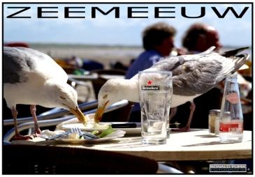 IJmuiden (poster) Info: www.ronaldpuma.nl