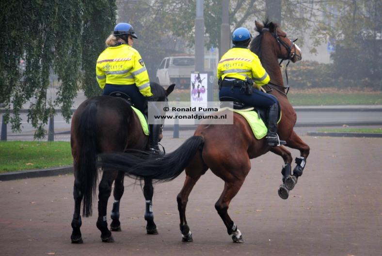 1.900 politie te paard (C) Ronald Puma