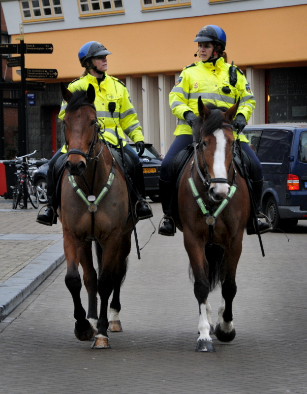 PIC_0050.B.800. politie te paard (C) Ronald Puma