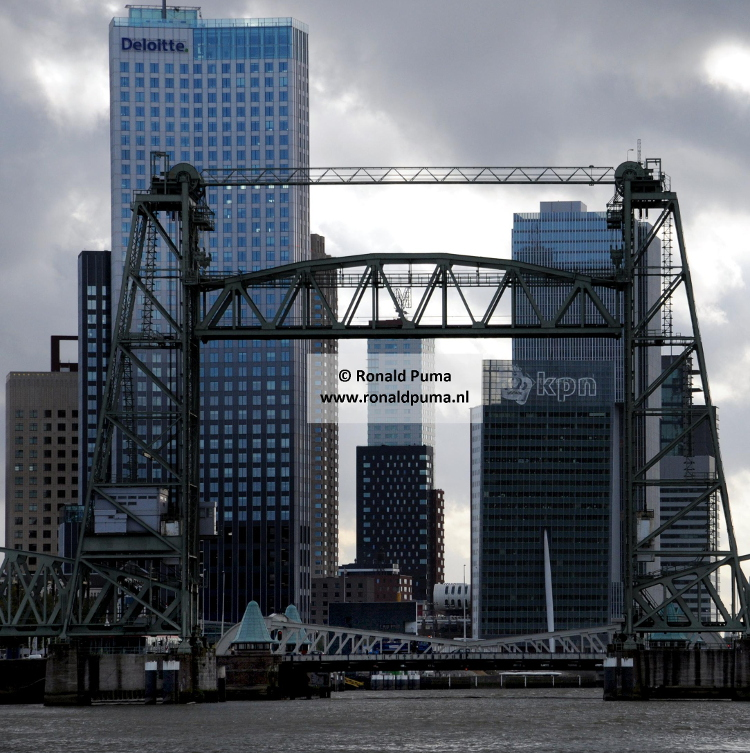 1.750 Skyline Rotterdam (C) Ronald Puma