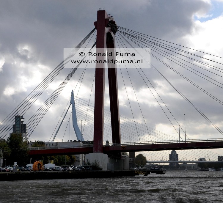208. Skyline Rotterdam (C) Ronald Puma
