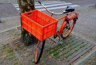 Oranje 04 (C) Ronald Puma.nl