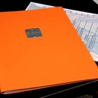 Oranje 05 (C) Ronald Puma.nl