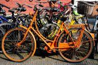 Oranje 09 (C) Ronald Puma.nl