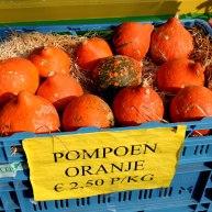 Oranje 10 (C) Ronald Puma.nl