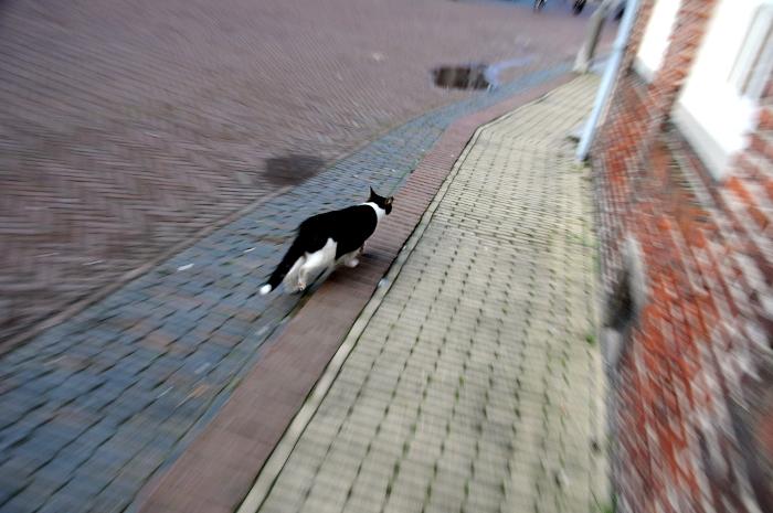 Straatfotografie (C) Ronald Puma 085