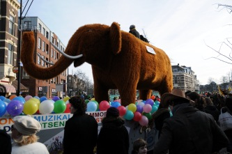 (C) Ronald Puma Carnaval Nijmegen 2013 0138