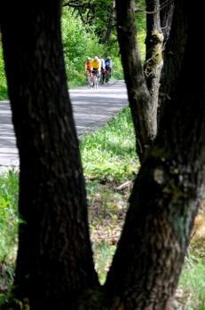 Ronde van Nijmegen 2013 (C) Ronald Puma 0266