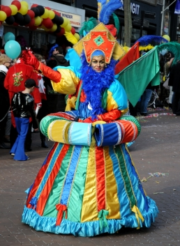Carnaval 2014 (C) Ronald Puma 0100