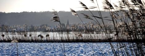 Op de achtergrond het kerkje van Persingen (het kleinste dorp van Nederland). (C) Ronald Puma