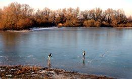 Het ijs is nog te dun om te schaatsen op de Oude Waal. (C) Ronald Puma.