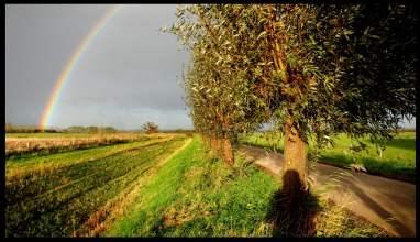 Een regenboog in de Ooijpolder bij Nijmegen.