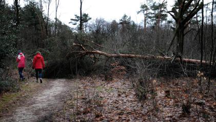 PIC_0004.1500 storm 18.01.2018 (C) Ronald Puma