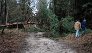PIC_0047.1500 storm 18.01.2018 (C) Ronald Puma