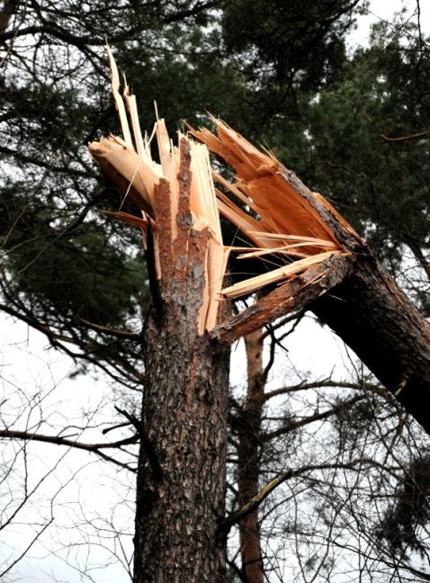 PIC_0059.800 storm 18.01.2018 (C) Ronald Puma