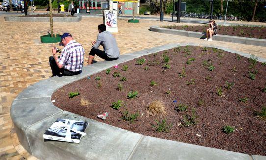Een nieuw plein langs de Steenstraat, de plantjes zijn wat pover gezaaid.