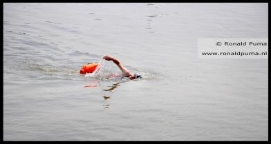 Zwemmer.