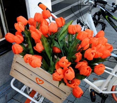 PIC_0226.800 StreetLife Netherlands (C) Ronald Puma