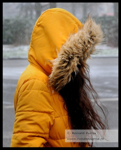 winter 22.01.2019 (c) ronald puma 04