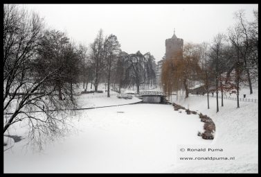 winter 22.01.2019 (c) ronald puma 09