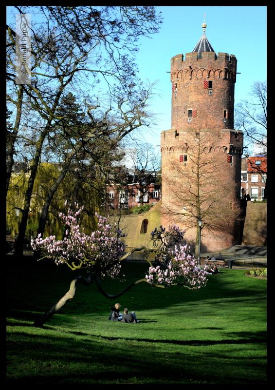Kronenburgerpark Nijmegen (C) Ronald Puma