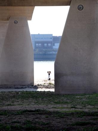 Waalbrug De Oversteek.