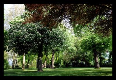 Valkhofpark Nijmegen in het voorjaar.