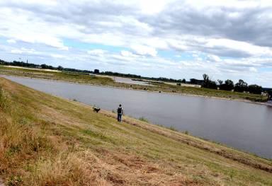 Man met hond loopt langs een zijarm van de Waal, de Spiegelwaal.