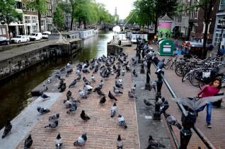 Eenhoornsluis / Haarlemmerstraat.