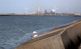 Op de achtergrond de staalfabriek Tata Steel in Velsen.
